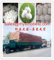 Relish Garlic