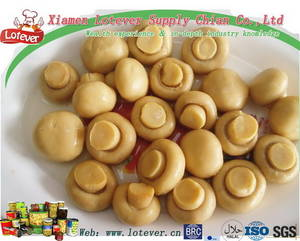 Wholesale Canned Mushrooms: Canned Mushroom Whole