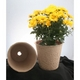 Sell sell paper pulp flower pot-flower container-floral container