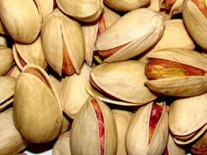 Wholesale Pistachio Nuts: Pistachio