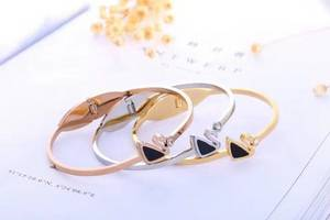 Wholesale bangles: Ladies Luxury Stainless Steel Bangles Armbanden