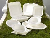 Sell Eco-green tableware,European Food Tray,Hamburger Box,Soup Bowl