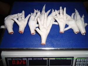 Wholesale frozen chicken wings: Grade A Frozen Chicken Paws& Feet& wings