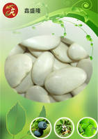 White Kidney Bean Extract 1% Phaseolamin  HPLC (New Stock)