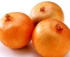 Wholesale fresh onion: High Quality New Crop Onion