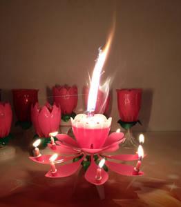 Wholesale fireworks: Firework Lotus Birthday Candle
