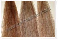 Sell horse tail hair  used for tail extension