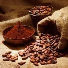 Wholesale cocoa: Cocoa