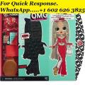 Lol Surprise Omg Swag Fashion Doll with 20 Surprises