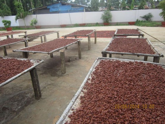 Cacao Thanh Dat Co.,LTD