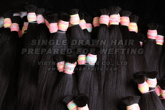 Vietnam Hair Star Co., Ltd