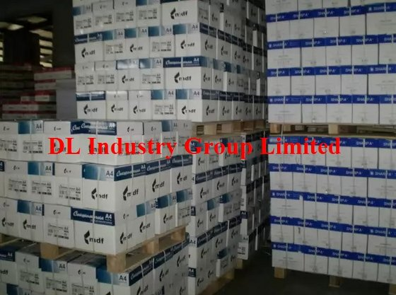DL Industry Group Limited