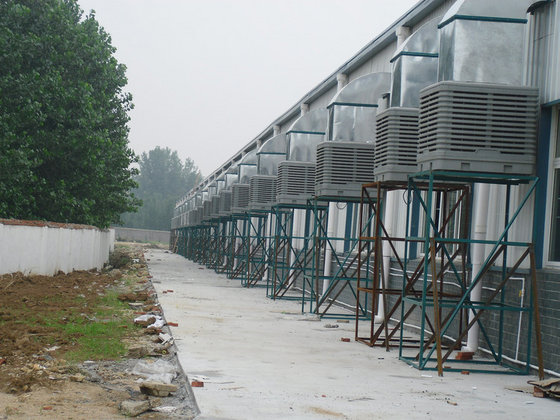 Shandong Maoming Agricultural Technology Co. LTD