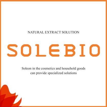 Soleon Co., Ltd.
