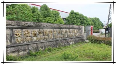 Anhui Ningguo Zhengshi Seals Co.,Ltd.