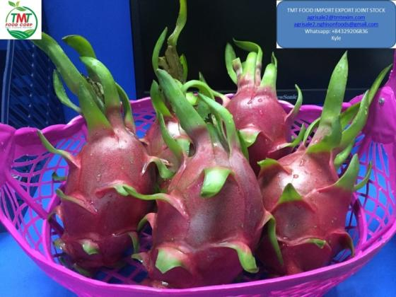 Dragon Fruit From Vietnam(id:10677346) Product details