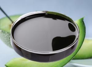 Wholesale seaweed extract: Fast Concentrated Seaweed Extract Liquid Fertilizer