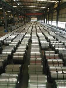 Wholesale jakarta: GI/Galvanized Steel Coils/Hot-dip Galvanized Coils