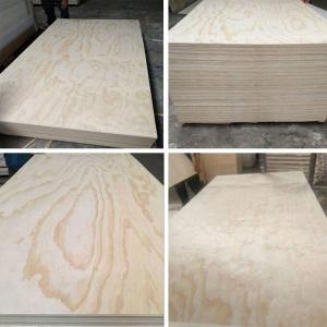 Wholesale commercial furniture: CDX / Furniture Commercial Pine Plywood