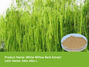 Wholesale health food: Health Foods White Willow Bark Powder