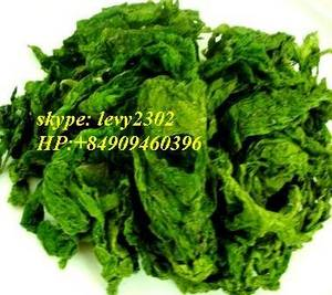 Wholesale raw sun dried seaweed: Dried Seaweed Ulva Lactuca