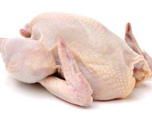 Wholesale certification: Best Price with HACCP Certification Whole Frozen Chicken