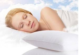 Wholesale hotel bed pillows: Hotel Used 700 Thread Count Cotton Fabric Down Bed Pillow in White