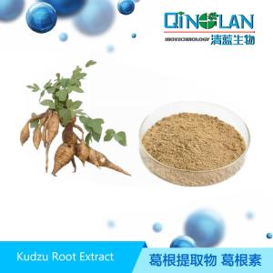 Wholesale plant extract powder: Organic Plant Extract Puerain Kudzu Root Extract  Powder