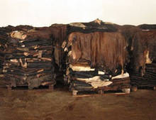 Wholesale animal hides: Salted Cow Hide and Donkey Animal Skins Hides