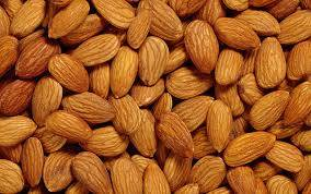 Wholesale almond nuts: Best Quality Almond Nuts for Sale From Brazil