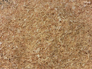 Wholesale mushroom production bags: Wood Shaving for Animal Bedding
