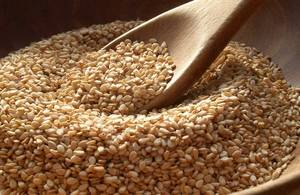 Wholesale lipid profile: High Quality Sesame Seeds / Sunflower Seeds / Watermelon Seeds