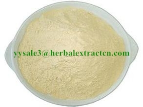 Sell White Kidney Bean Extract, 3000 U/g, Special weight control, manufacturer