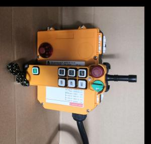 Wholesale radio: AC220V/110V F24-6D Radio Remote Control with Emergency Stop