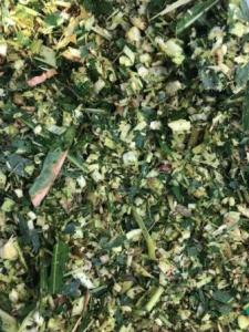 Wholesale Other Animal Feed: Corn Silage