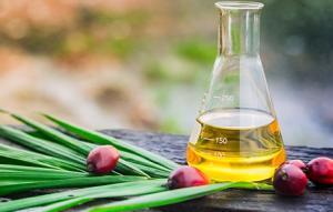 Wholesale rbd palm oil: RBD Palm Oil (CP8, CP10)