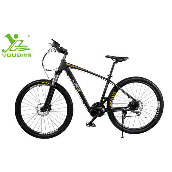 JQ  Electric Moutain Bicycle, Shimano 9 Speed Folding Electric Bicycle