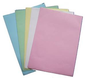 Wholesale paper sheeting: carbonless Paper 610*860mm in Sheet and Rol