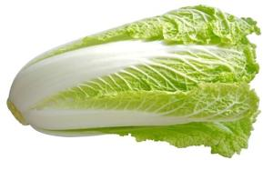 Wholesale Fresh Garlic: Fresh Celery Cabbage /CELERY CABBAGE/New Harvest Fresh Celery Cabbage