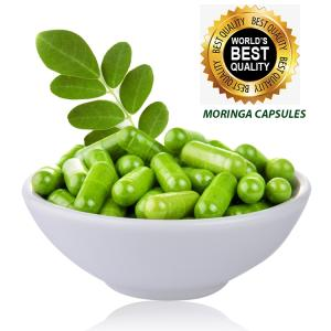 Wholesale weight loss capsule: Moringa Oleifera Capsules Weight Loss Supplement Manufacturer in India