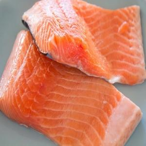 Wholesale frozen fish: Fresh and Frozen Salmon Fish Suppliers of Salmon Fish