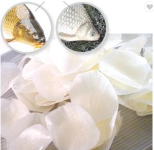 Wholesale fish scales: Fish Scale Supplies From Vietnam 05/2019