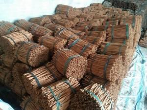 Wholesale cassia cinnamon: Vietnam Cinnamon (Cassia)