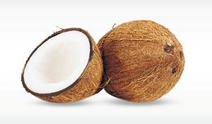 Wholesale health functional food: Fresh Coconut