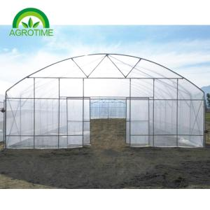 Wholesale greenhouse plastic film: 2019 Low Cost Single Tunnel Plastic Film Greenhouse with  Hydropnic System for Vegetables