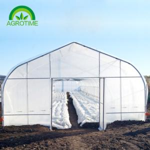 Wholesale natural fertilizer: 2019 Single Tunnel Greenhouse with 200 Micron Plastic Film for Lettuce and Tomato