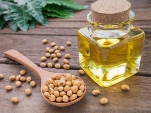 Wholesale soya beans: Quality Refined Soya Bean Oil / 100% Refined Soybean Oil for Sale