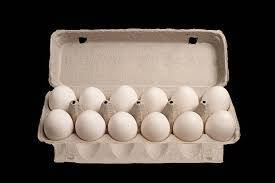 Wholesale Eggs: Fresh Table Chicken Eggs in Cartons (White & Black)