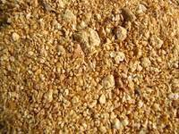 Wholesale soybean meal: Corn Gluten Meal, Soybean Meal,Feather Meal,Fish Meal,Poultry Meal, Fish Meal