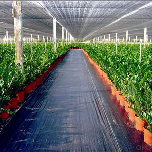 Wholesale Agricultural Plastic Products: Weed Control Mat, Ground Cover, Silt Fence Selvedge